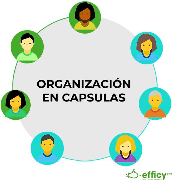 organizacion de ventas en capsulas