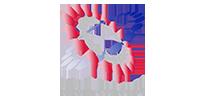 Idiom Concept logo