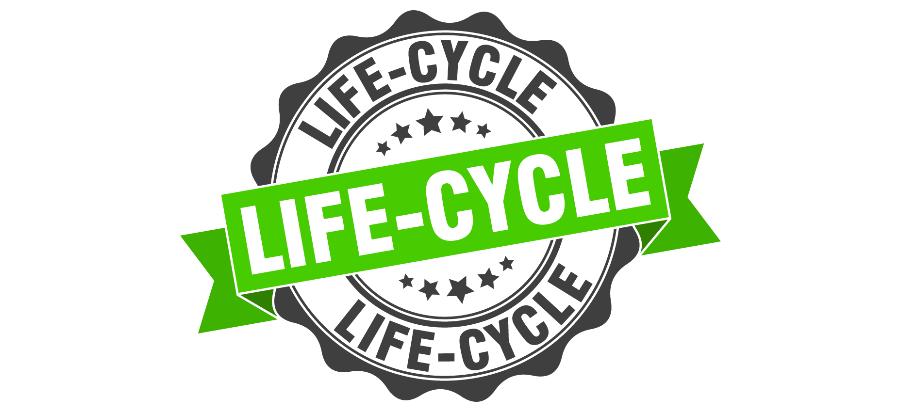 Ciclo de vida cliente