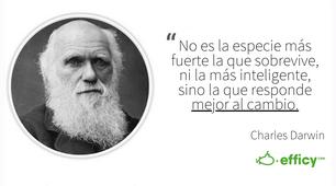 Charles Darwin Phrase - Analysis Competition - Analisis de la Competencia